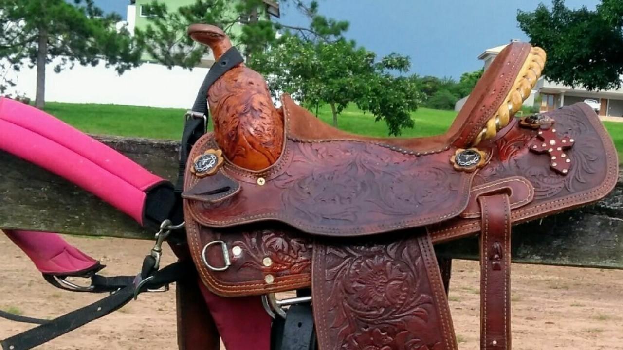 Foto: O meio do cavalo e o Marketing Social